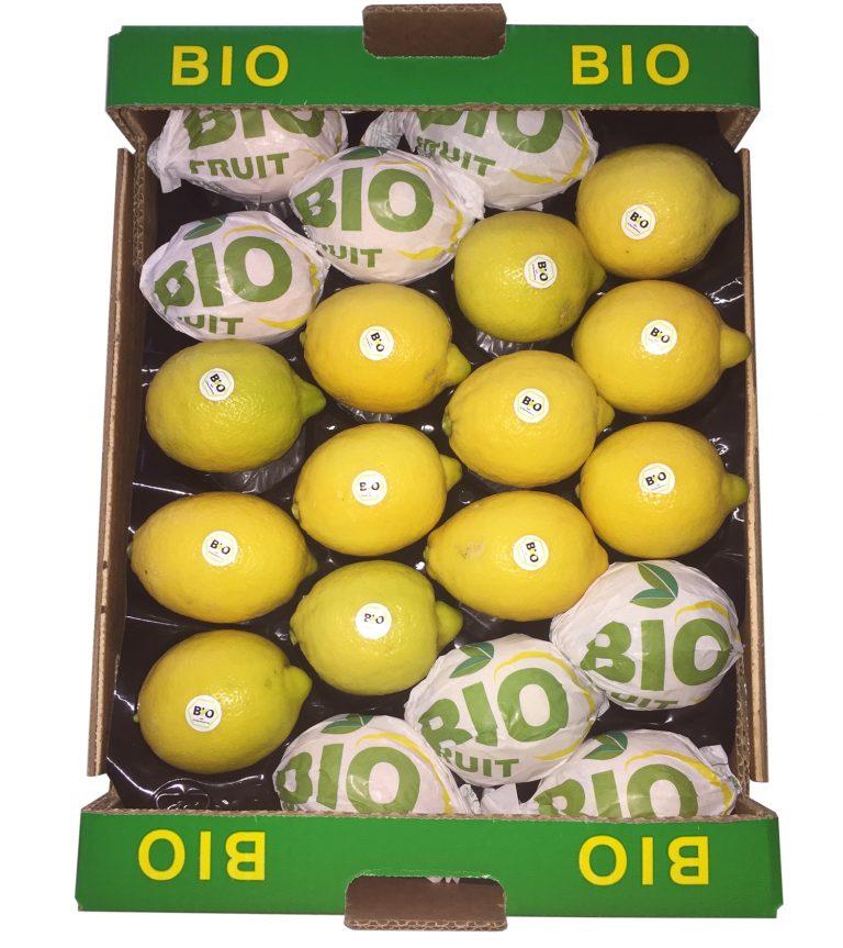 Bio Fruit - Zitronen von P.A.S.A.M Agrumi Zitronen